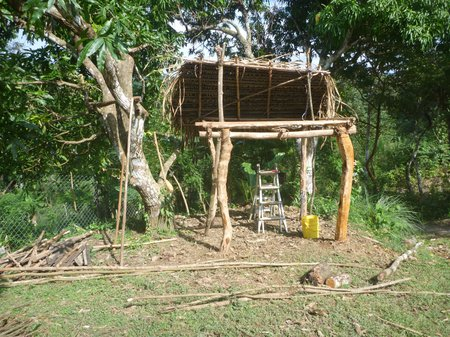 the base structure