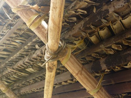 the palm leaves are tied with malagueto, the rafters with marica